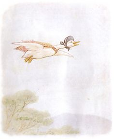 Soaring. The Tale of Jemima Puddle Duck