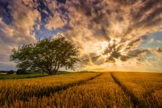 Lightexplosion @ bavarian countryside by Stefan  Prech on 500px