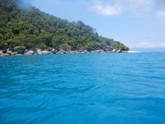 How does this look? How about a trip over to Fitzroy-Island for the Christmas break...don't forget to book in now! Pic by Kurita Koujiro #fitzroyisland #cairns