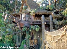 Google Image Result for http://land.allears.net/blogs/jackspence/Treehouse%252033.jpg