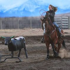 Amber on Cinch roping