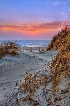 "scarletsrealmagic:  Daybreak on the Outer Banks by Dan Carmichael Heading into a new week, fraught with ""things to do,"" I'm already feeling overwhelmed. But then this quote popped into my head. I had to look it up to remember the exact wording, so I thought maybe you would like it, too. Happy Monday, friends. Go be peaceful. ""I think over again my small adventures, my fears, These small ones that seemed so big. For all the vital things I had to get and to reach. And there is only one great…"