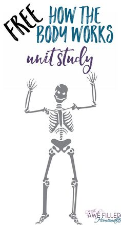How the Body Works Unit Study- Learning about the Human Body doesn't have to be boring, nor expensive! That is why I am sharing several FREE resources AND a FREE printable unit study. via Awe Filled Homemaker Science Curriculum, Preschool Science, Science Lessons, Teaching Science, Science Activities, Life Science, Teaching Kids, Free Homeschool Curriculum, Homeschooling Resources