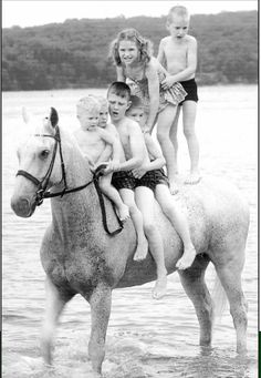 Not only was Snowman a grand champion, he was also a kids' horse!