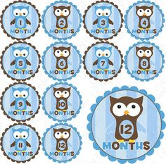 Monthly onesie stickers- Photo prop or baby shower gift.