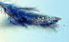 Blue Feather Digital Art HD desktop wallpaper, Drop wallpaper, Sparkle wallpaper, Feather wallpaper - Digital Art no. Feather Wallpaper, Lit Wallpaper, Glitter Wallpaper, Widescreen Wallpaper, Wallpapers, Unique Wallpaper, Computer Wallpaper, Blue Backgrounds, Wallpaper Backgrounds