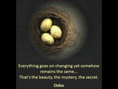 Osho. Wisdom. Change.