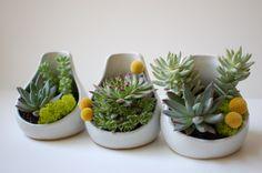 Teardrop Planter-White Glaze-Small by lovebugkiko on etsy
