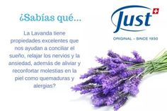Natural, Health And Nutrition, Allergies, Aromatherapy, Lavender, Nature, Au Natural