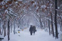 Almaty after a heavy snowfall, Kazakhstan