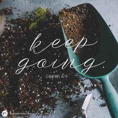 """#WednesdayWisdom """"And let us not grow weary of doing good for in due season we will reap if we do not give up."""" Galatians 6:9"""