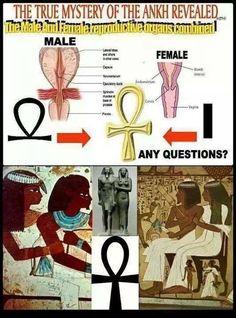 history facts My Kemetic Dreams Egyptian Symbols, Ancient Egyptian Art, Ancient History, Mayan Symbols, Viking Symbols, Viking Runes, Ancient Symbols, Black History Books, Black History Facts