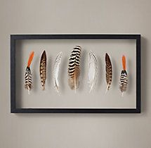 Framed Feather - Lady Amherst's Pheasant, Silver Pheasant and Mottled Peacock
