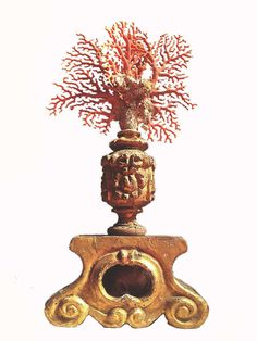 Beautiful Natural Specimen of Red Coral Branch and Memento Mori image 4