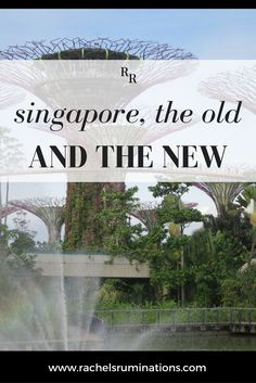 Singapore. The Old and The New. After my visit to Pulau Ubin in Singapore, I spent most of the rest of my very short stay visiting with my foster daughter, Krislyn, and her Singapore family. But Krislyn and I needed time for a good long chat, and decided to check out Singapore's Gardens by the Bay. Click here to read more about my modern Singapore discoveries!