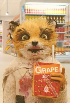 Fantastic Mr Fox  2009 - this was one of my hospice patient's favorite movie. Watched it with him on his birthday...<3