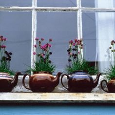 """""""Replace traditional window boxes with a row of old-fashioned Brown Betty teapots for a quirky take on the English window sill. Line them up facing the same direction to increase the humorous tone and plant them with cottage-style flowers for a charming shabby-chic look. The spout is ideal place for watering the plants."""": Common Floor"""