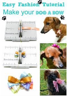 MultiColored Bowdabra Dog Bow  Bowdabra Blog - Dog and pet bows are fun little accents. Place the dog bows on collars, leashes or little tufts of hair. The Mini Multi-Colored Bowdabra Dog Bow 13 Bowdabra with Ruler makes it easy to create these tiny little bows. Use scraps of ribbon 5″ long to make a beautiful multi-colored dog bow.