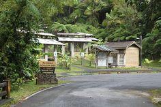 El Yunque nat park -- Puerto Rico US