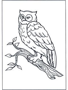 Owl Coloring Books for Adults . Owl Coloring Books for Adults . Coloring Pages Printable Coloring Book Pages Best Adult Books Coloring Pages To Print, Coloring Book Pages, Printable Coloring Pages, Coloring Sheets, Coloring Pages For Kids, Kids Coloring, Free Coloring, Owl Stencil, Animal Templates