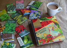 Transform an old photo album into a seed organizer