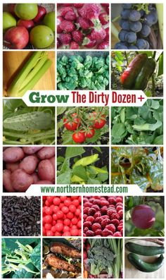 Grow the Dirty Dozen + Foods. if space is limited, grow things that are more contaminated by pesticides.