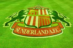 #SAFC Sunderland Afc, Football, Soccer, Futbol, American Football, Soccer Ball