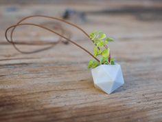Look sustentável: coletivo de designers cria colares com vasos de plantas em miniatura | Virgula