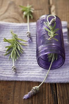 The lavender lifestyle.