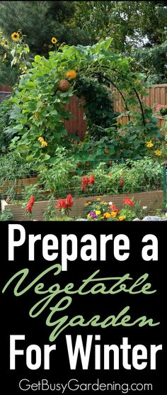 Wondering what to do with your vegetable garden this fall? Here's some information to help you Prepare a Vegetable Garden for Winter | GetBusyGardening.com