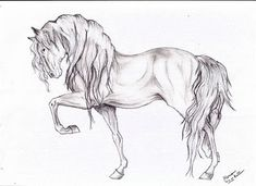#horse #drawing #equine #art