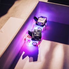 Something we loved from Instagram! #amsterdam #discoverynight #research #robots #ufo #led #thesis #masterthesis #raspberrypi #thymio #lights #faceagainstwall #erasmus #2015 #netherlands by alezonta Check us out http://bit.ly/1KyLetq
