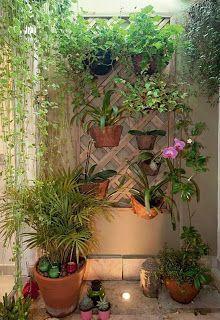 Pergola With Roof Plans Info: 5568467573 Patio Pergola, Pergola With Roof, Backyard Landscaping, Pergola Kits, Garden Deco, Terrace Garden, Balcony Plants, Indoor Plants, Indian Garden