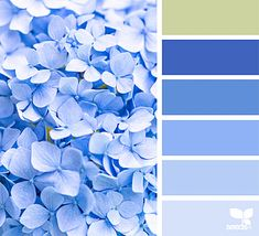 { spring blues } | image via: @zoepower The post Spring Blues appeared first on Design Seeds.