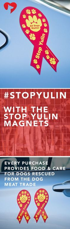 I WILL BE A WALKING BILLBOARD AGAINST YULIN. Help stop yulin by donating your trunk. These magnets will help raise awareness to end the Yulin Dog Festival. ***Every purchase provides days of food and care for dogs rescued from the meat trade. #stopyulin