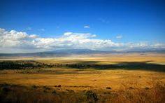 El suelo contiene muchos minerales y poca materia orgánica; también hay zonas de la estepa con un alto contenido en óxido de hierro, lo que otorga una tonalidad rojiza a la tierra.