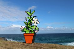 Pot Plant Sculpture by the Sea Bondi 2017