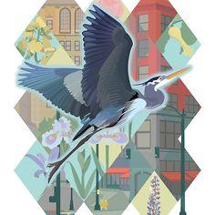 Great Blue Heron in Seattle #illustration #tshirt #seattle