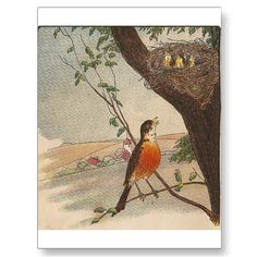 """ZAZZLE:  R is for Robin  This cute image is from """"The Expressive Readers First Reader"""" By Baldwin & Bender. The book is copyright 1911 by the American Book Company"""