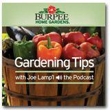 Podcast of gardening tips!