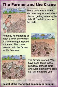 Moral stories: the farmer and the crane stories with moral lessons, english moral stories Stories With Moral Lessons, English Moral Stories, Moral Stories In Hindi, English Stories For Kids, English Lessons For Kids, English Story, Kids English, English Reading, Short Stories With Moral
