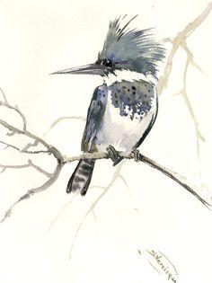 Belted Kingfisher, 15 x 12 in, original watercolor painting, kingfisher art, bird, birds bird lover, bird watching bird art, gray brown by ORIGINALONLY on Etsy