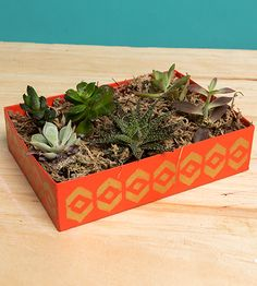 3 DIY Goddesses Show Us How They Rule the Birchbox Upcycle | Birchbox