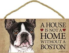 A House is Not a Home Without a Boston Terrier