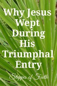 Jesus' final entry into Jerusalem on Palm Sunday was supposed be triumphal. It was supposed to be a happy day. But in the middle of the excitement, Jesus stopped to weep. Why was He weeping? Hosanna In The Highest, Triumphal Entry, Book Of Matthew, Why Jesus, Psalm 118, Bible Teachings, Bible Verses, Bible Quotes, Scriptures