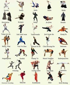 The different kinds of Martial arts.