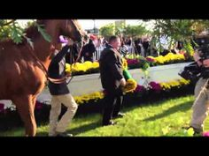 Kentucky Derby and Preakness winner California Chrome exits the Pimlico winner's circle after becoming the first Cal-bred to win two legs of the Triple Crown.