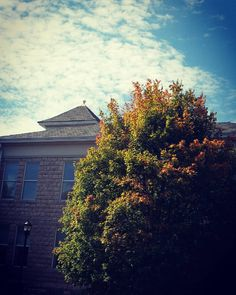 Subtle signs of fall on campus... #fallforsemo