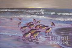 Sand Pipers Dig Sand by Marilyn Nolan-Johnson
