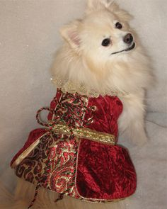 Renaissance Christmas Rosie.  This dress is fully lined with satin, has a french lace collar, and brass snap closures.